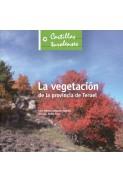 La vegetación de la provincia de Teruel
