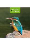 Aves de la provincia de Teruel